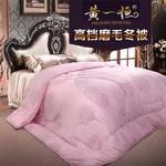 黄一恒家纺 加厚被子 磨毛保暖冬被  被芯 春秋被 超柔软床上用品