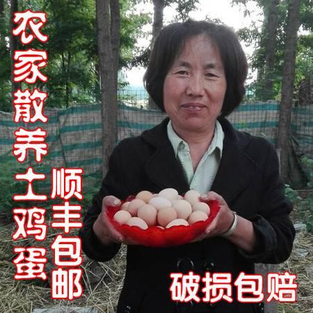 懒觉大王  散养鸡,土鸡蛋  40枚全国包邮