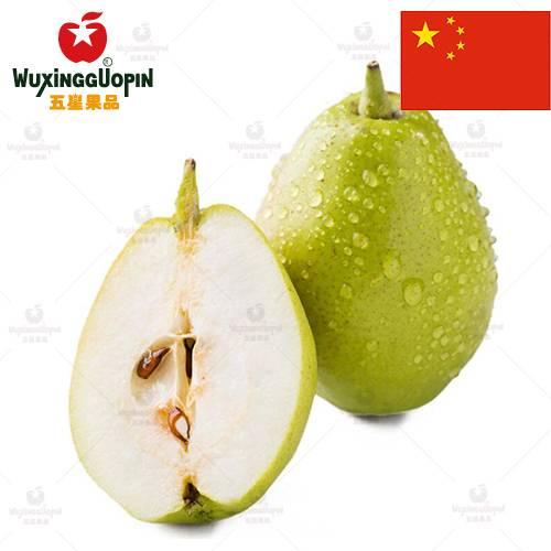 【五星果品】新疆水果产地   库尔勒香梨  超值6斤