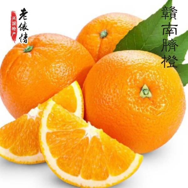 【预售】江西特产 赣南脐橙 10斤 包邮 偏远地区不发货将于11月16日发货
