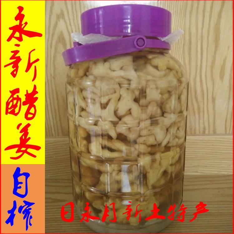 江西醋姜井冈山永新农家冰糖米醋姜片生姜醋小黄姜日永月新土特产
