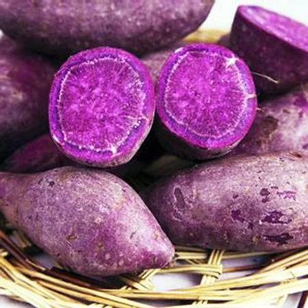 【天天推荐】爱心扶贫 崇义农家现挖自种紫薯5斤9.9元包邮