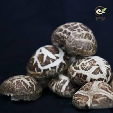 信阳土特产 大别山有机花菇250g